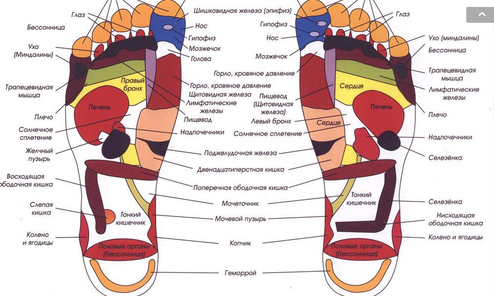 Активные точки на ладони массаж кистей рук болезни по руке